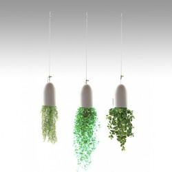 """Double Loop"" Plant Hanging Kits"