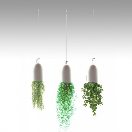 """Double Loop"" Plant Hanging Kits, hanging plants"