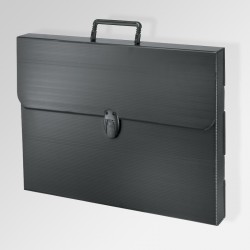 'Polylite' Artwork Case