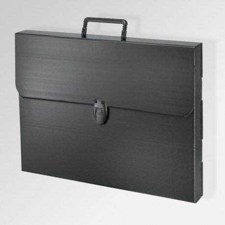 'Polylite' Artwork Case, Black